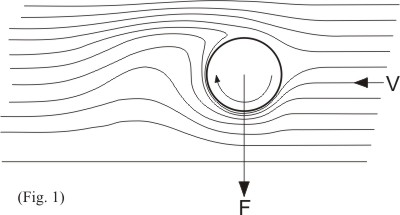 magnus flow